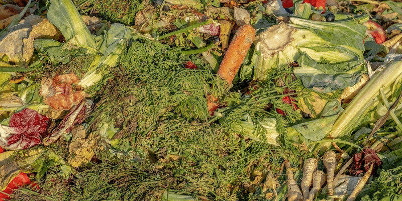 the impact of food waste on america 1601000598 2509